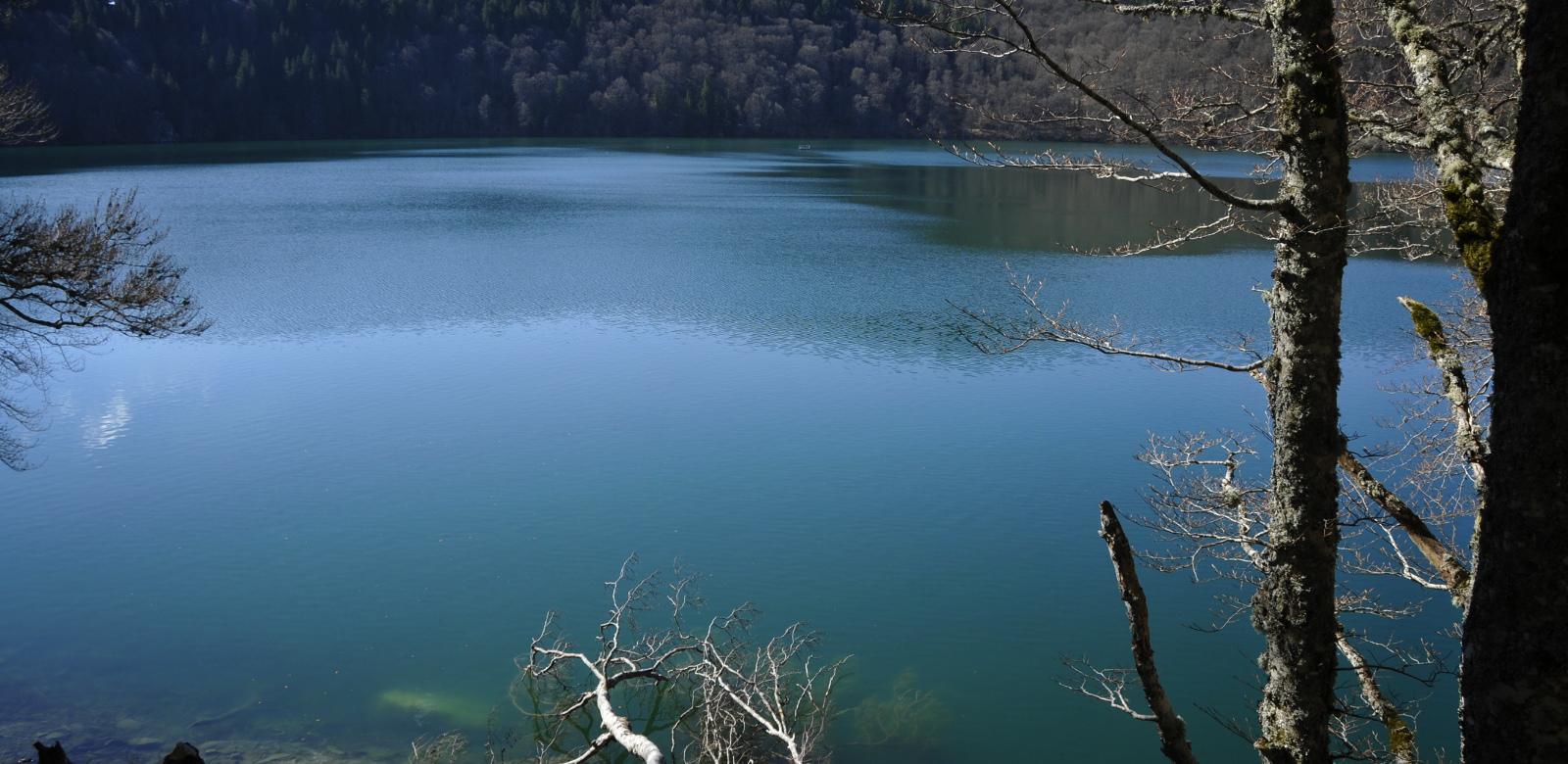 Pêche dans le lac Pavin guide de pêche auvergne
